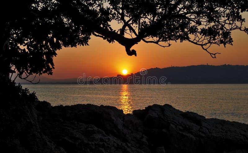 在戛纳的日落,现出轮廓树和岩石,胡安莱斯潘法国 图库摄影