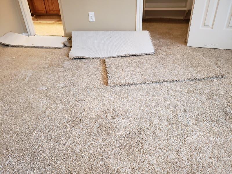 在房子的卧室安装的新的地毯 免版税库存照片