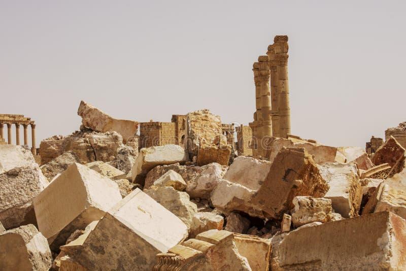 在扇叶树头榈附近的镇在叙利亚 图库摄影