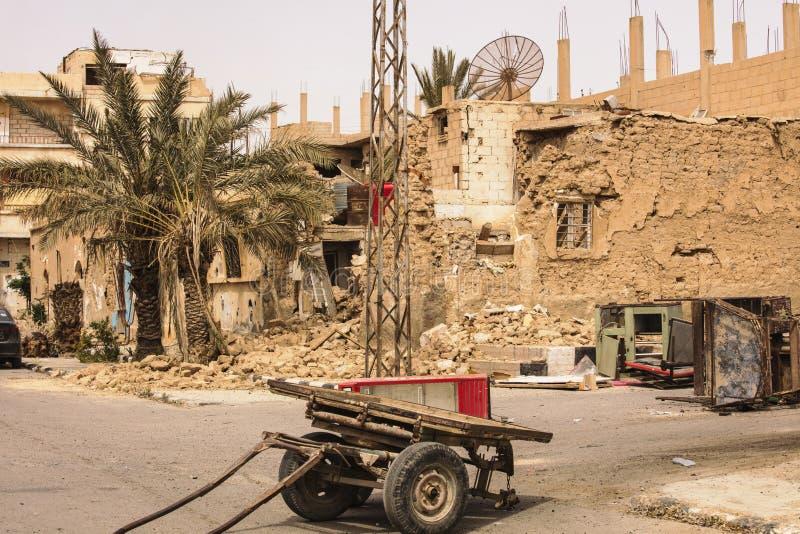 在扇叶树头榈附近的镇在叙利亚 免版税库存照片