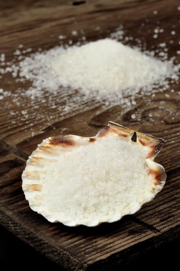 在扇贝壳的粗盐 库存图片