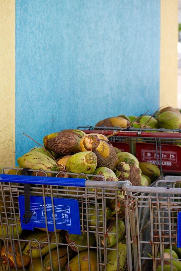 在手推车的巴哈马地方椰子 免版税库存照片