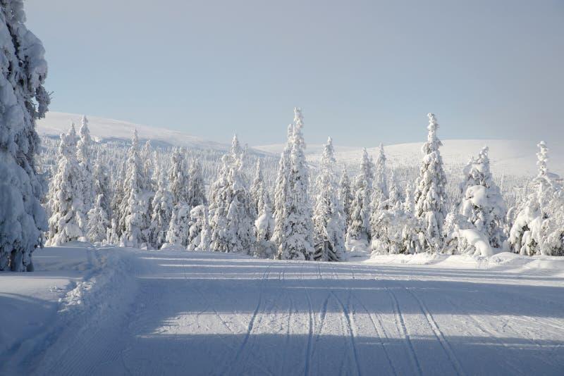 滑雪捷径方式 库存图片