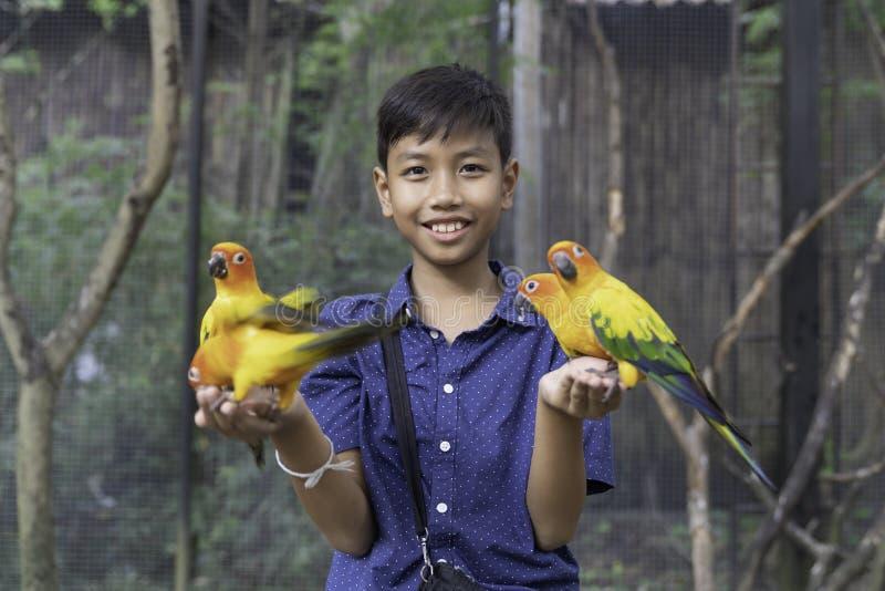 在手边享用与爱鸟和身体的亚裔逗人喜爱的男孩 图库摄影