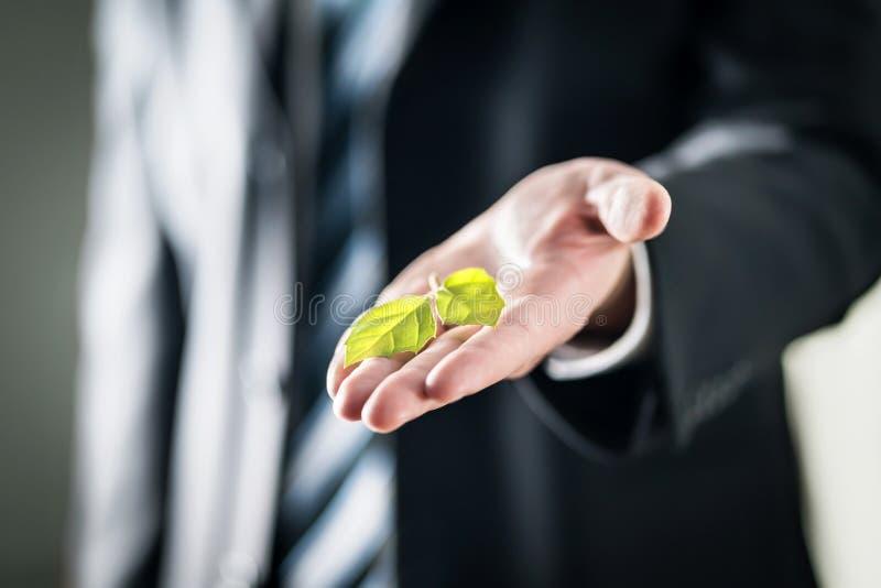 在手边拿着绿色叶子的商人 自然保护,全球性变暖,气候变化和污染概念 库存图片
