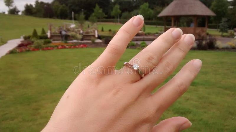 在手绿草背景的定婚戒指 免版税库存图片