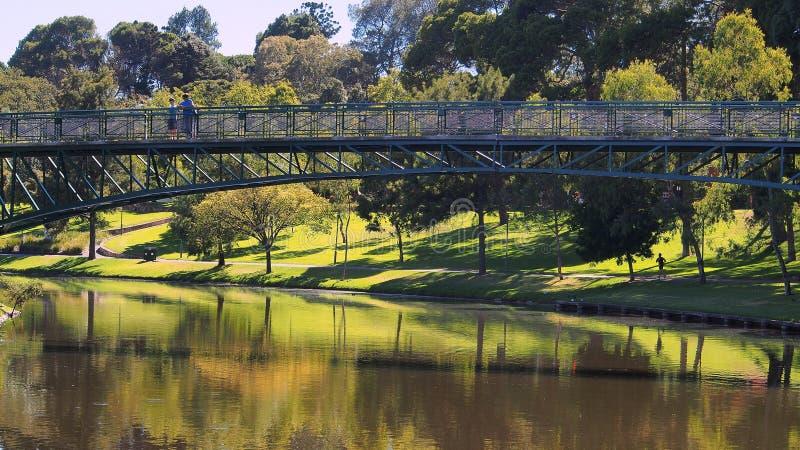 在托伦斯河,阿德莱德的步行桥 库存照片
