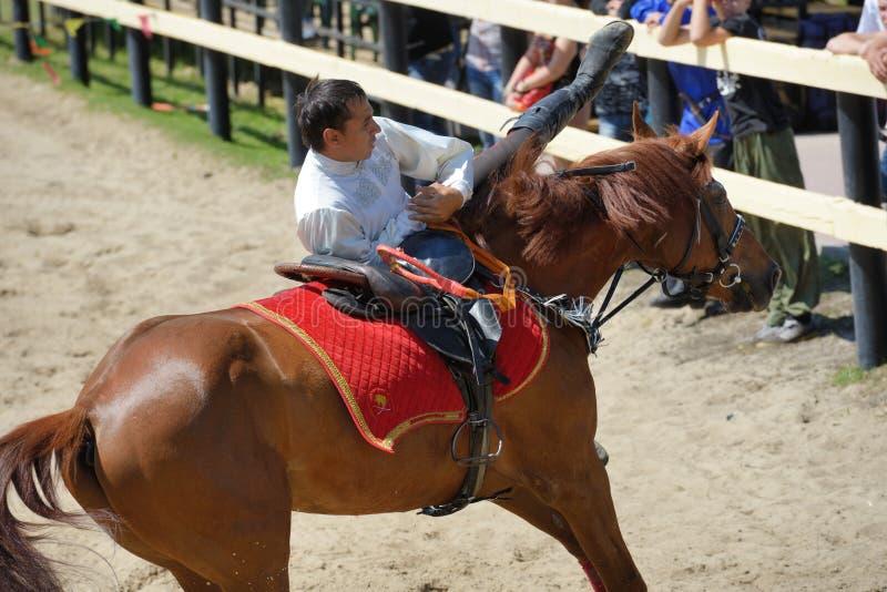 在把戏骑马的俄国冠军 免版税库存图片