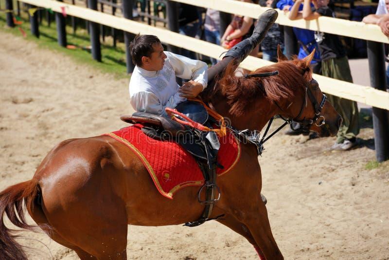 在把戏骑马的俄国冠军 库存照片