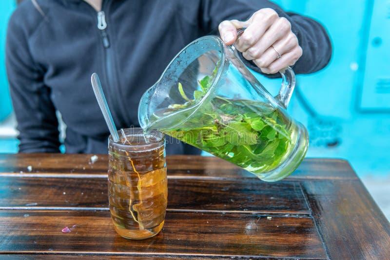 在投手的新鲜薄荷茶 免版税图库摄影