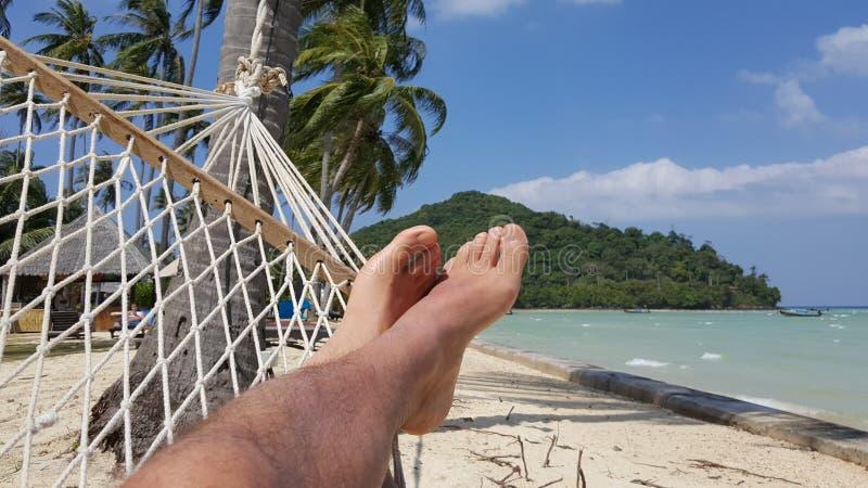 在披披岛,泰国的吊床 免版税库存照片