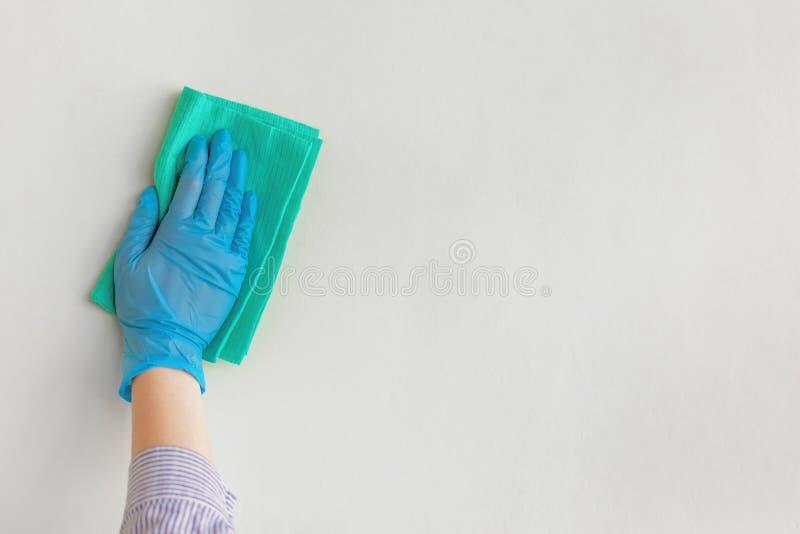 在抹从尘土的蓝色橡胶防护手套的雇员手墙壁与干燥旧布 商业清洗的公司 库存照片
