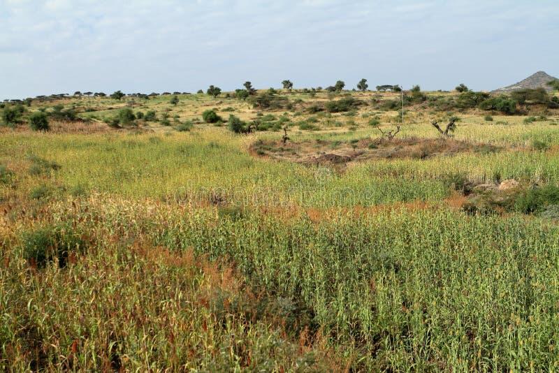 在拉利贝拉附近的风景在埃塞俄比亚 库存照片