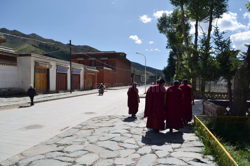 在拉卜楞附近的生活在夏河, Amdo西藏,中国 修士是e 库存图片