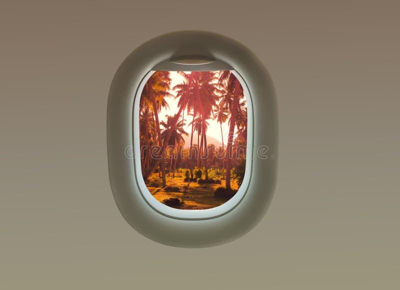 在拉迪格岛海岛上的棕榈树在平面窗口里 热带塞舌尔群岛 库存照片