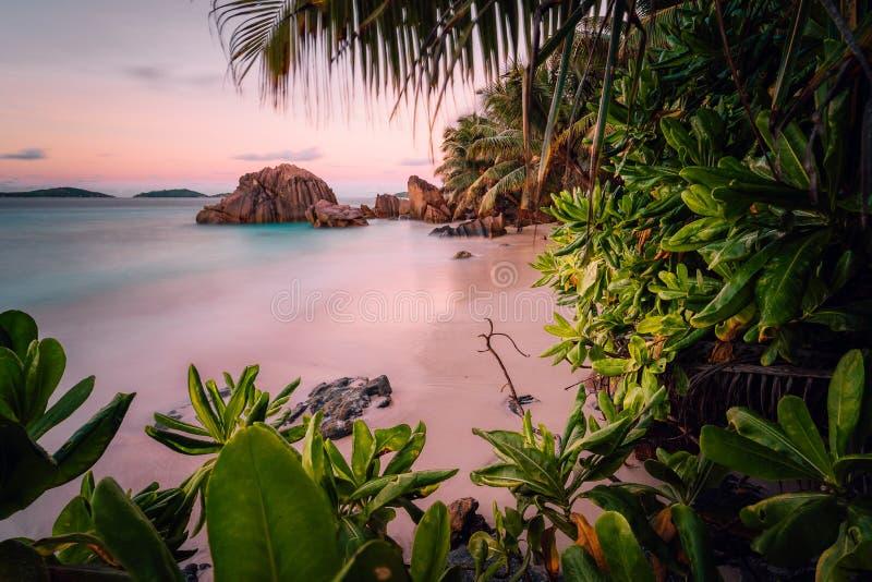 在拉迪格岛,塞舌尔的天堂异乎寻常的海滩 在令人惊讶的日落期间的长的曝光 免版税库存照片