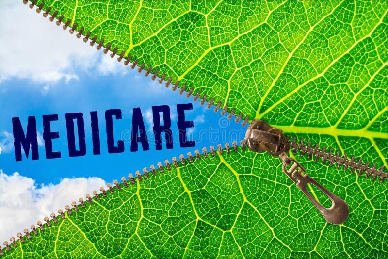 在拉链叶子下的医疗保障词 免版税库存图片