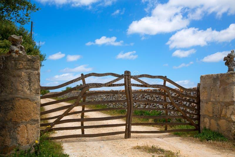 在拜雷阿尔斯的Menorca传统橄榄树木篱芭 免版税图库摄影