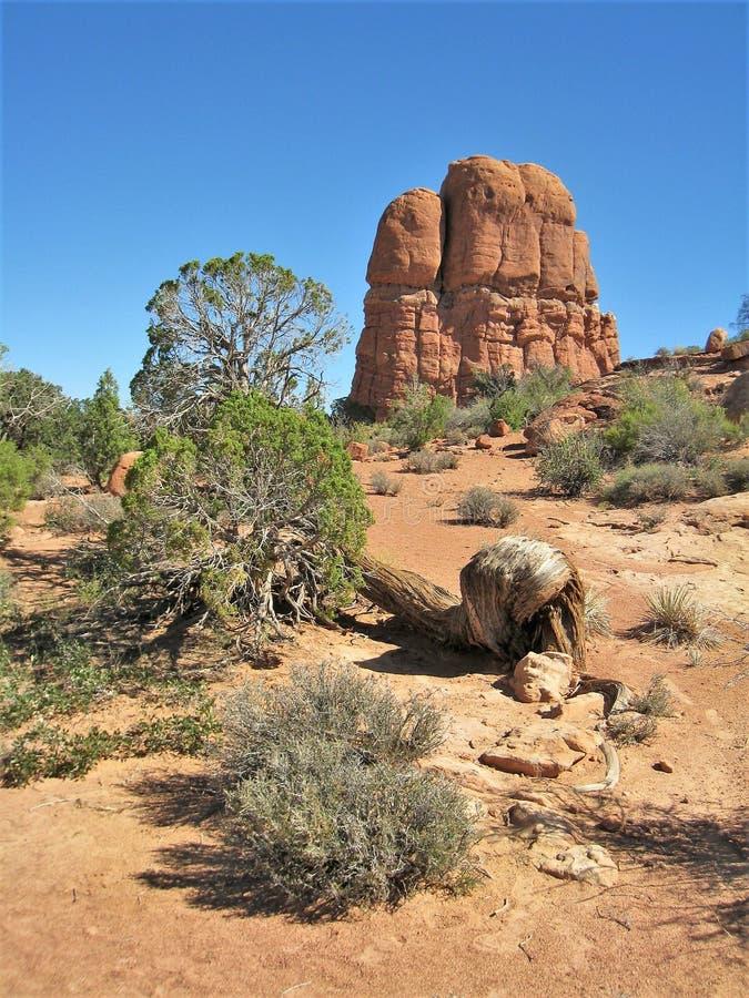 在拱门国家公园的岩层在犹他 免版税图库摄影