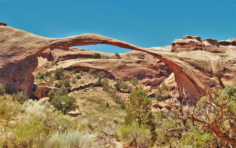 在拱门国家公园的风景曲拱在犹他 库存照片