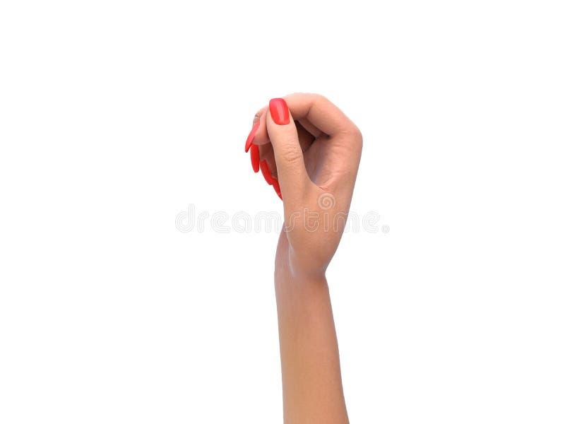 在拿着板料或卡片d的一个静态姿势的女性手回报在白色 向量例证