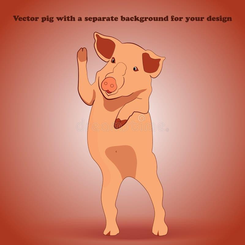 在挥动对我们的可拆的背景的小猪 免版税库存图片