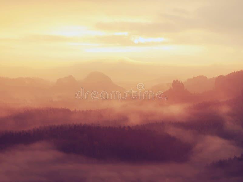 在捷克萨克森瑞士公园一座美丽的山的惊人的日出  从有雾的背景增加的岩石小山峰顶 免版税库存图片
