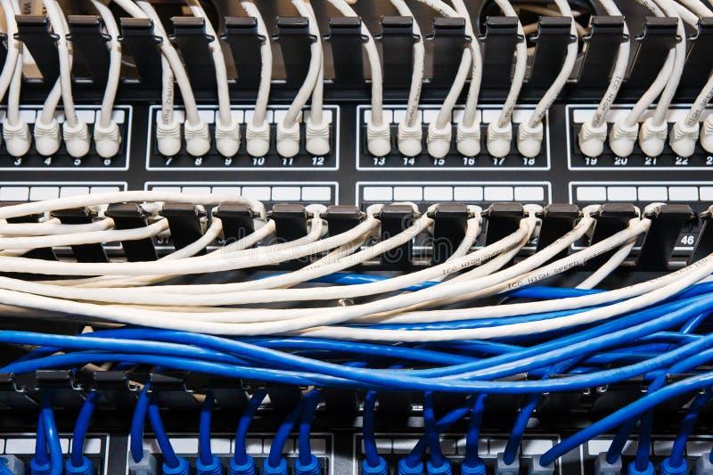 在接线板的蓝色和白色以太网电缆。 免版税库存照片