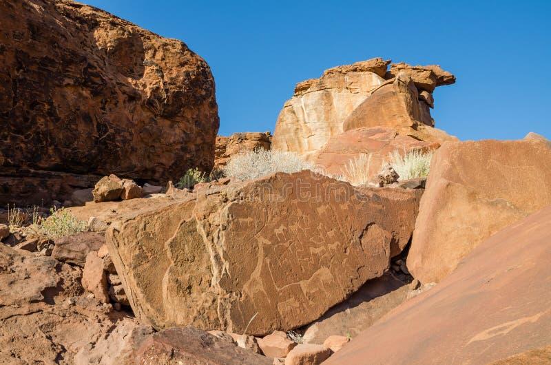 在推菲尔泉的著名动物岩石板刻在Damaraland,纳米比亚,南部非洲 图库摄影