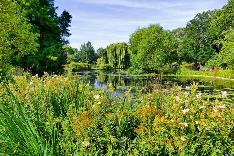 在摄政公园的风景Gardenscape在伦敦,英国 免版税库存图片