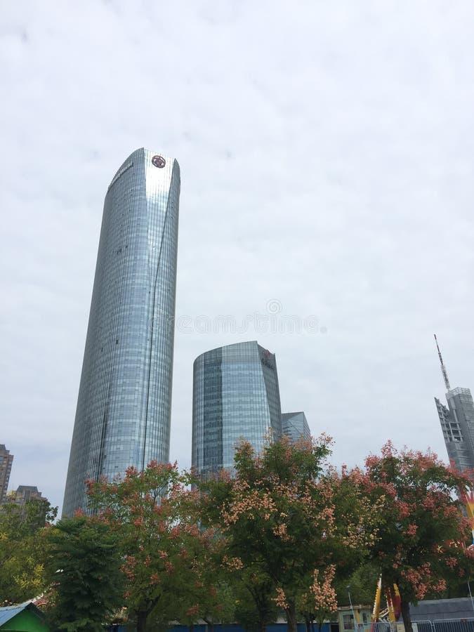 在摩天大楼下,花开花 免版税库存图片