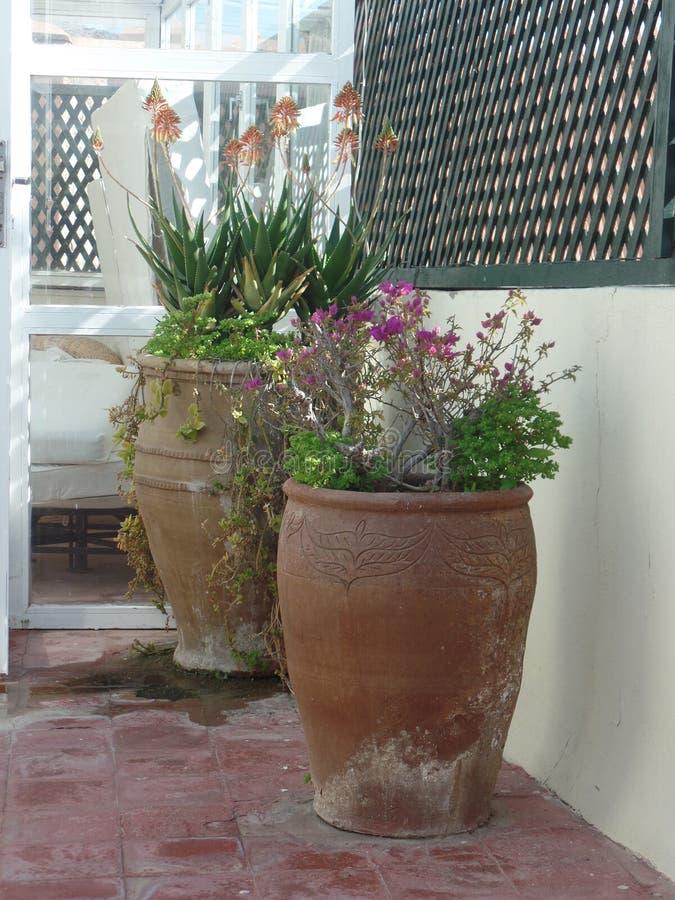 在摩洛哥屋顶大阳台的两个大花盆 库存图片