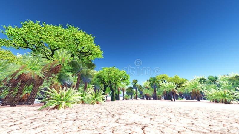 绿洲在摩洛哥 免版税图库摄影