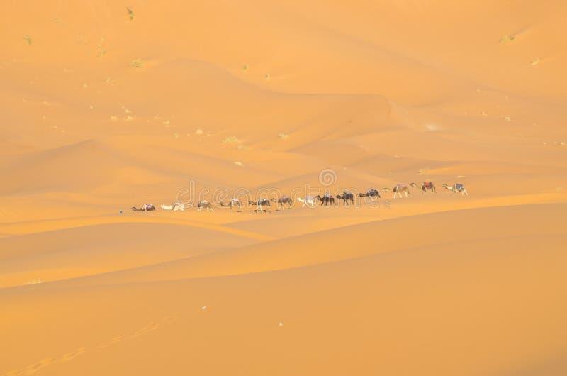 在撒哈拉大沙漠的有蓬卡车 免版税库存图片
