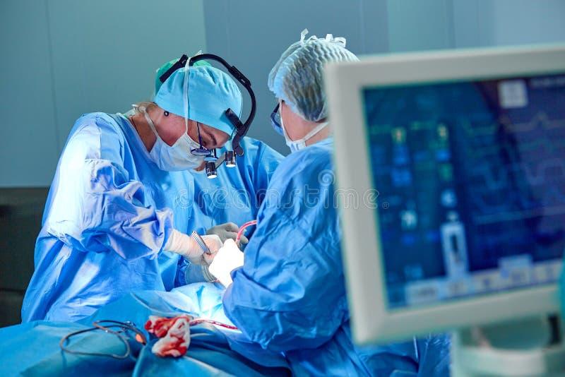 在操作急诊室的医院手术的心电图显示与外科医生迷离队的耐心心率  库存照片