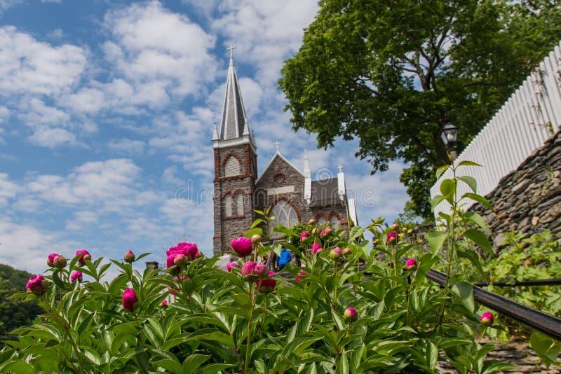 Download 在攀登的大丽花向圣彼得 库存照片. 图片 包括有 有历史, 游人, 倒挂金钟, 教会, 粉红色, 竖琴师 - 72353912