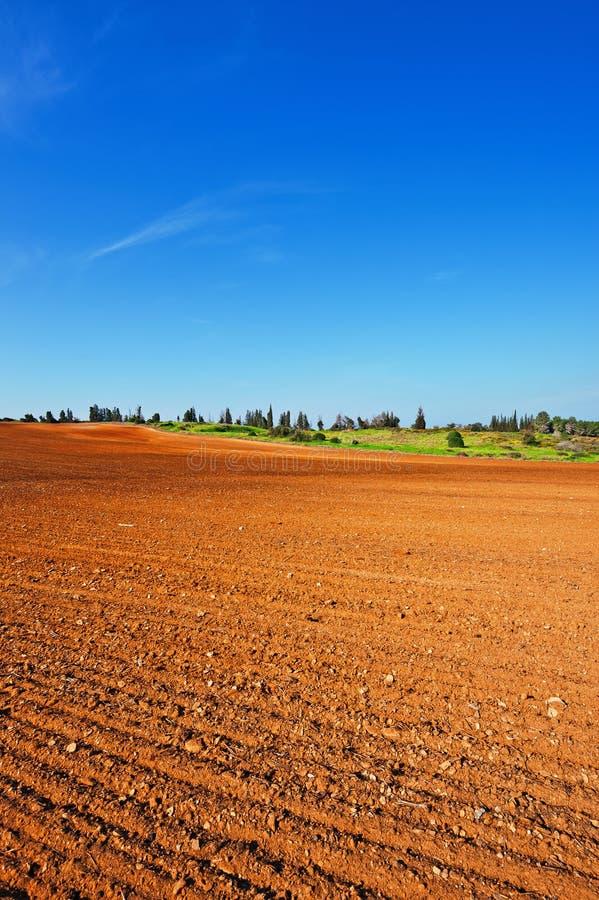 贫瘠土壤 免版税库存图片