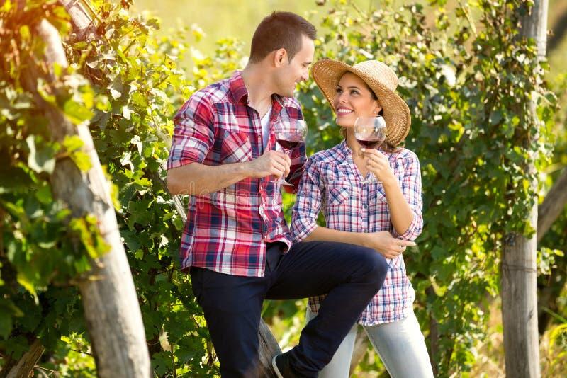 在敬酒用酒的爱的夫妇在葡萄园里 免版税图库摄影