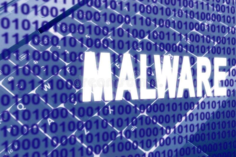 在文本的二进制代码malware 皇族释放例证