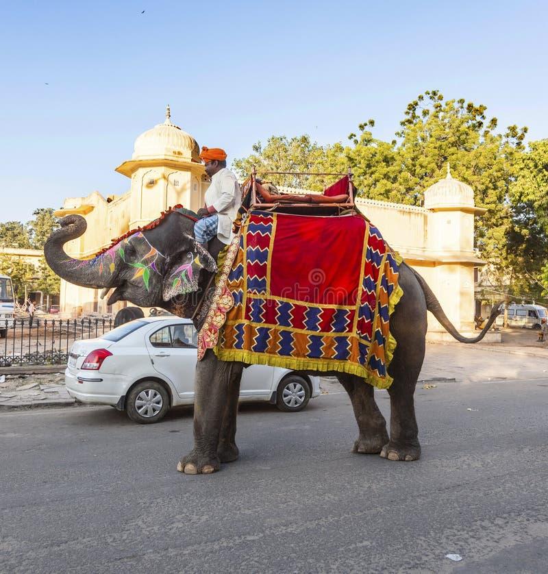 在斋浦尔堡垒的大象与游人 库存图片