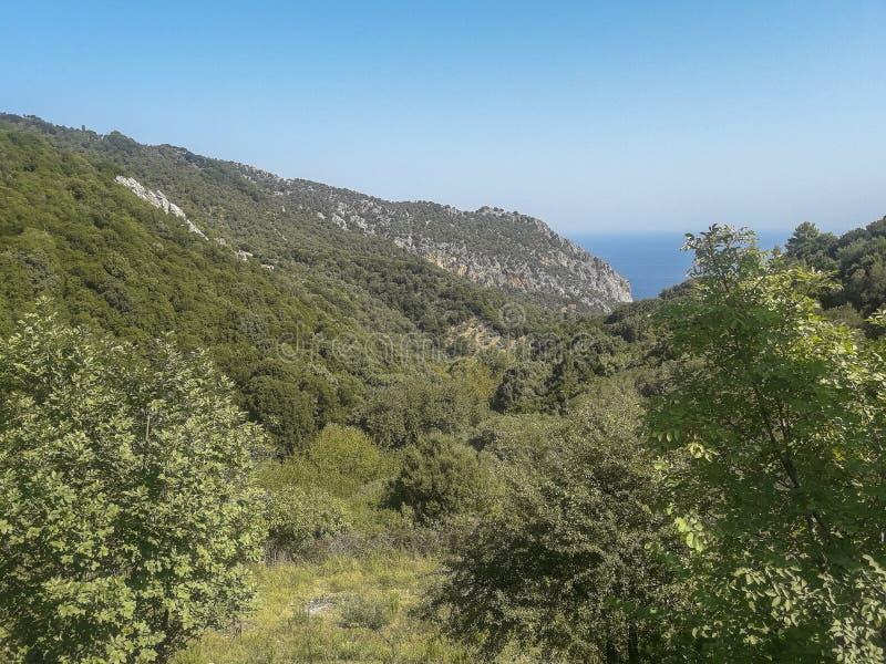 在斯基亚索斯岛海岛,希腊上的全景 库存照片