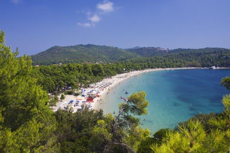 在斯基亚索斯岛海岛的Koukounaries海滩在希腊 免版税库存图片