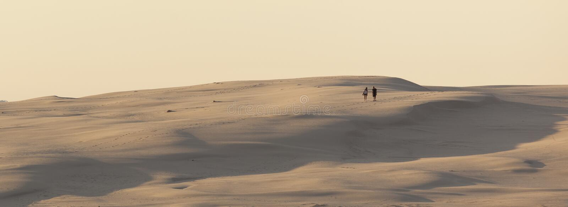 在斯托克顿海滩附近的沙丘。斯蒂芬斯港。安娜海湾。南方 免版税图库摄影