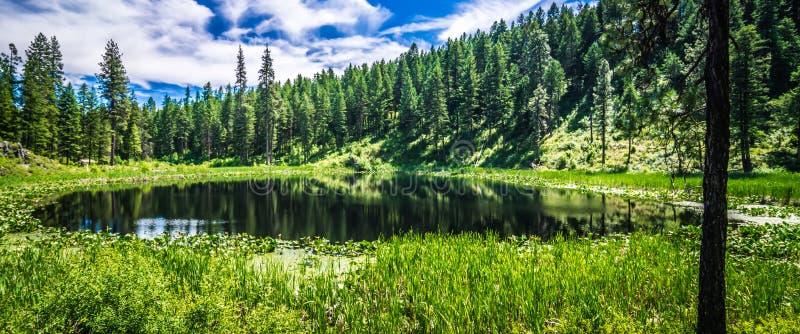 在斯波肯河华盛顿附近的自然scenics 免版税库存图片