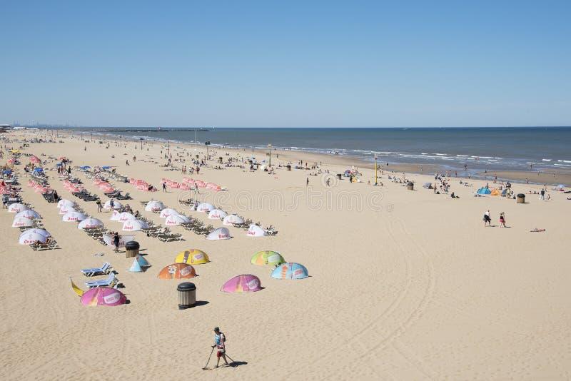 在斯海弗宁恩小室Haag,荷兰的拥挤沙滩 免版税库存图片