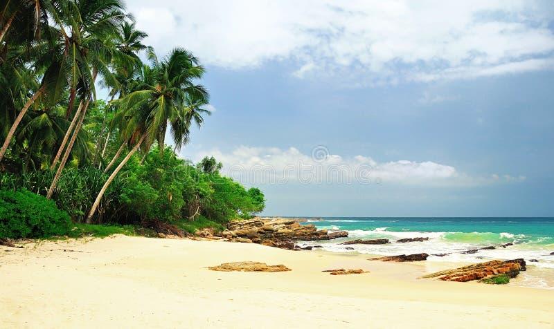 Download 在斯里兰卡的海滩 库存图片. 图片 包括有 马尔代夫, 小珠靠岸的, 手段, 火箭筒, 放松, 蓝色, 田园诗 - 72369947