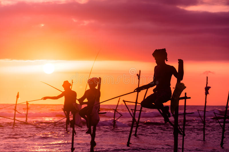 在斯里兰卡,一位地方渔夫在独特的样式钓鱼在晚上 库存照片