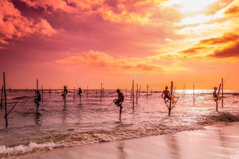 在斯里兰卡,一位地方渔夫在独特的样式钓鱼在晚上 免版税库存图片