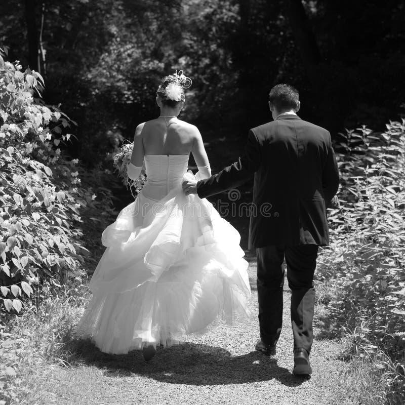 在新娘夫妇之后 图库摄影