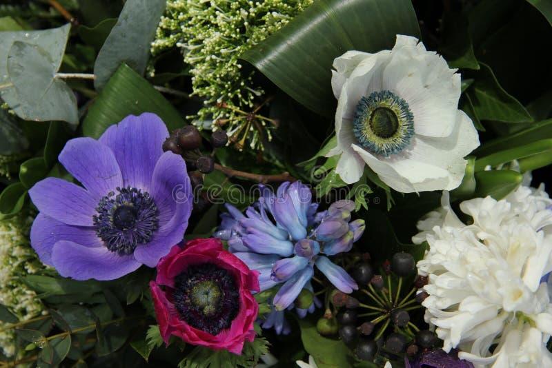 在新娘安排的银莲花属 免版税库存照片